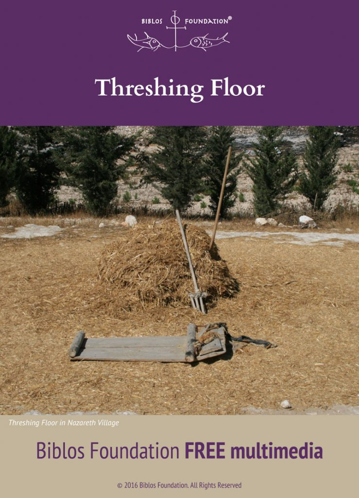 16-multimedia_Threshing-Floor_cover-739×1024