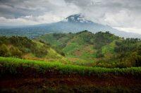 rwanda-healing