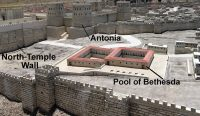 BN May 26 Pool of Bethesda